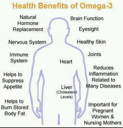 gI_139411_Health Benefits of Best Omega-3 Supplement